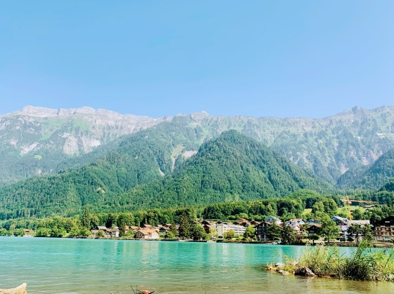Lakebrnz
